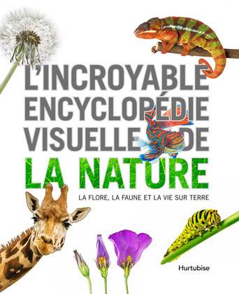Vente  L'incroyable encyclopédie visuelle de la nature