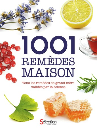 1001 rem des maison for 1001 maisons